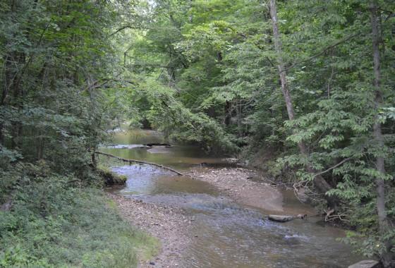 Gibson creek (2) (1)