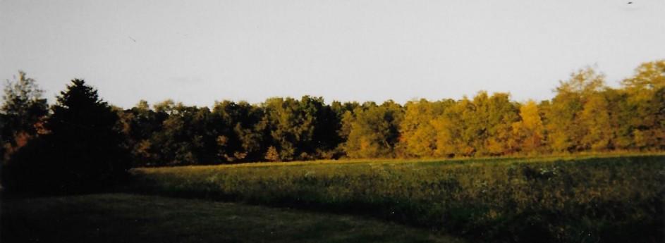 Anna Shumaker Land Auction | November 3 | Perrysville, Indiana