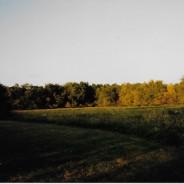 Anna Shumaker Land Auction   November 3   Perrysville, Indiana